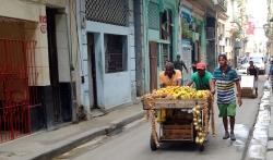 Yendo al mercado viernes por la mañana. // Headed to the market Friday morning.