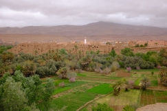The lush valley of Tinghir.